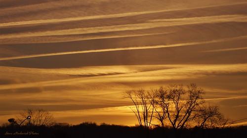 morning trees sky clouds fuji cloudy finepix fujifilm paintedsky a805 smack53 wmsunrise wmmorningsunshine