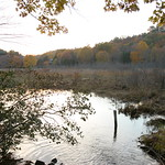 A lake in Lyme