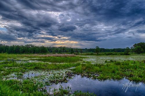 lake storm clouds sunrise unitedstates florida thunderstorm tallahassee hdr cumulonimbus labdscape pineyz lakelafayettte