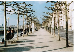 Fahrradrheinpromenade | by florian.scholz