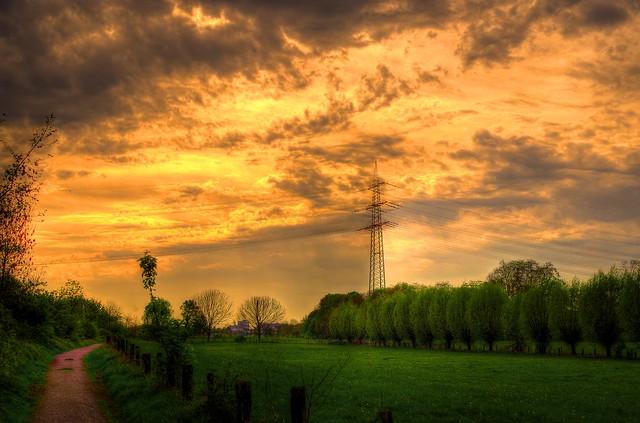 Rheinauen Sonnenuntergang