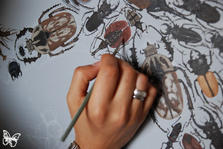 Hisham Echafaki | by Butterfly Art News