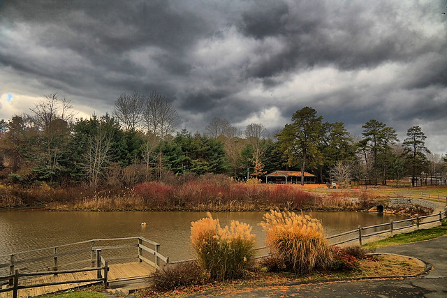 Cook Park Pond in HDR