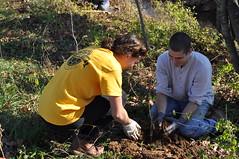 ENSP Tree Planting 12/5/15
