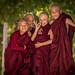 Young Burmese Monk
