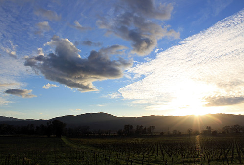rutherford napavalley napa winecountry california february2017 winery vineyard mummnapa mummnapavalley sky cloud clouds sunset