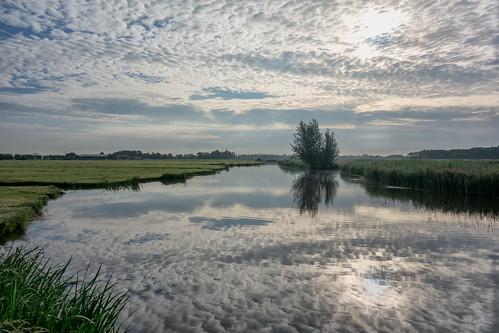 morning reflection tree clouds landscape waterscape altocumulus middendelfland nederlandvandaag