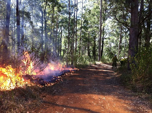conservation hazardreductionburn npws oeh firemanagement
