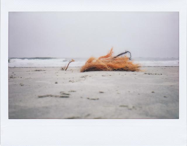 Goastnet - I shot film