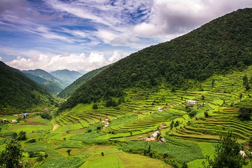 blue nepal mountains green clouds day village rice paddy cloudy first roadtrip fields agriculture mychoice pwlandscape
