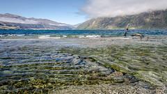 Lake Wakatipu - always beautiful