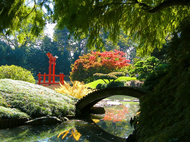 Japanese Autumn Garden