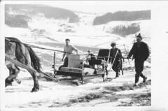 Březen 1960 - transport z Horní Rokytnice n.J.