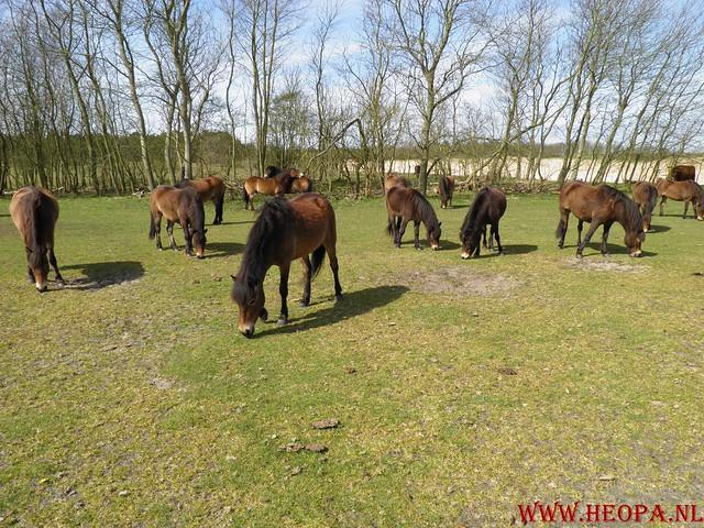 Castricum 15-04-2012 26 Km (56)