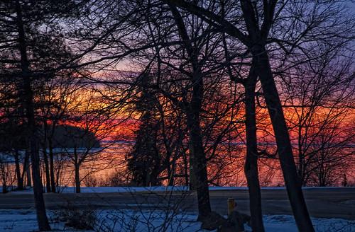 sky ontario tree home sunrise dawn kingston lakeontario collinsbay