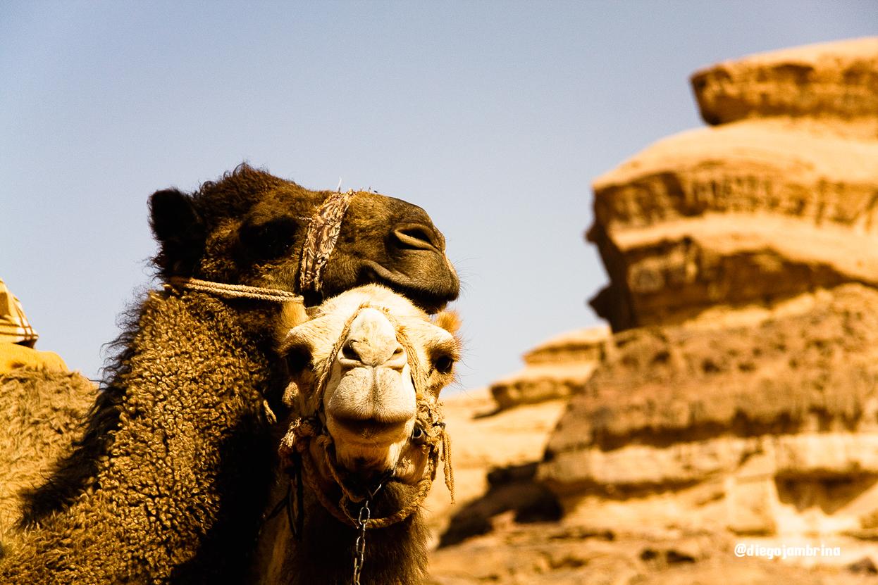 Viajar por Jordania con una cámara de fotos