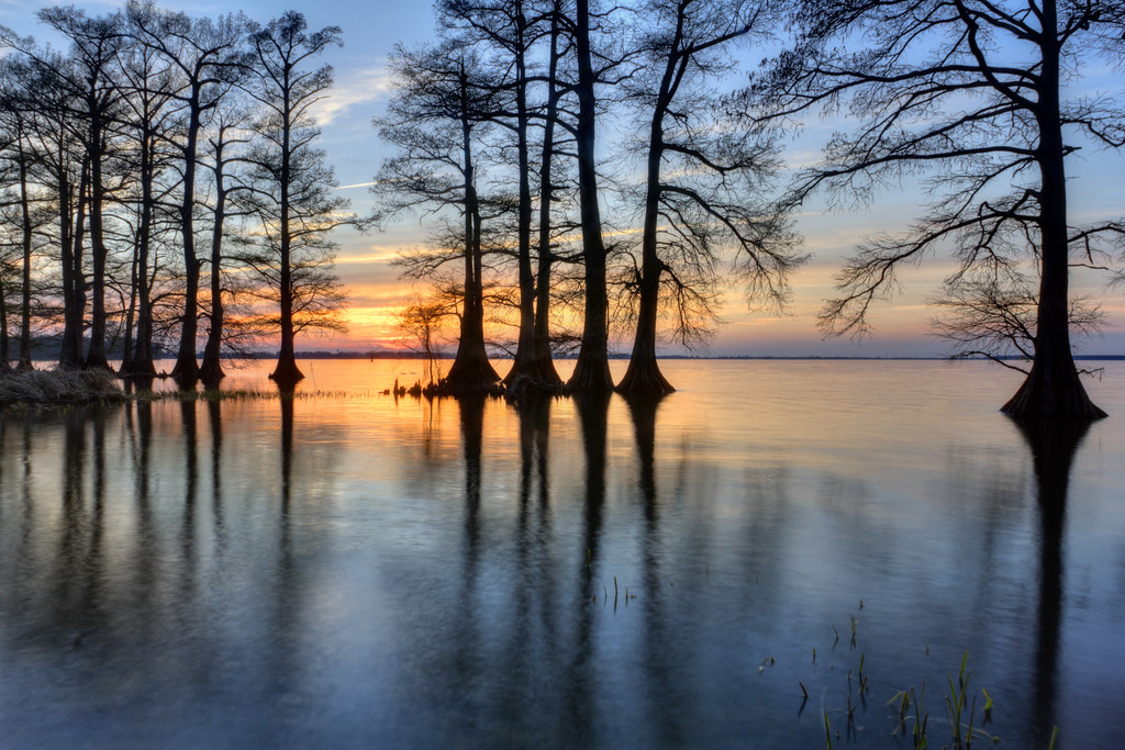 Sunset 1, Reelfoot Lake State Park, Lake County, Tennessee