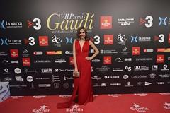 Catifa vermella VII Premis Gaudí (77)