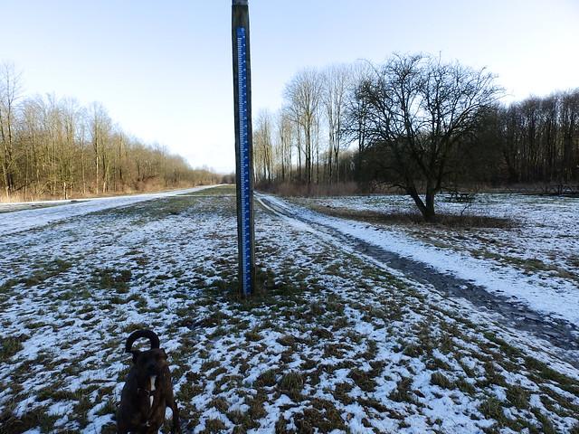 24-01-2015 Winterdag 25 Km Almere   (24)