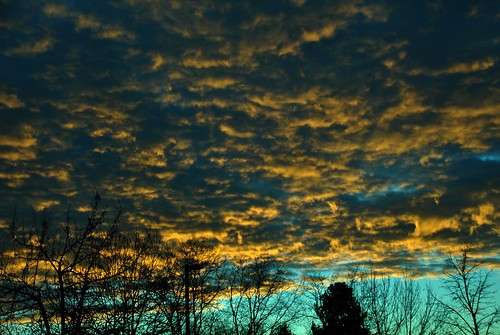 clouds cloud weather sky atmosphere atmospheric winter trees silhouette watervapor sunrise sunlight underneath altocumulus cielo everybodylovesasunrise thebottomoftheclouds amanecer