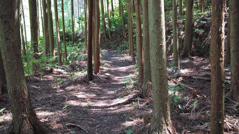熊野古道大辺路、長井坂