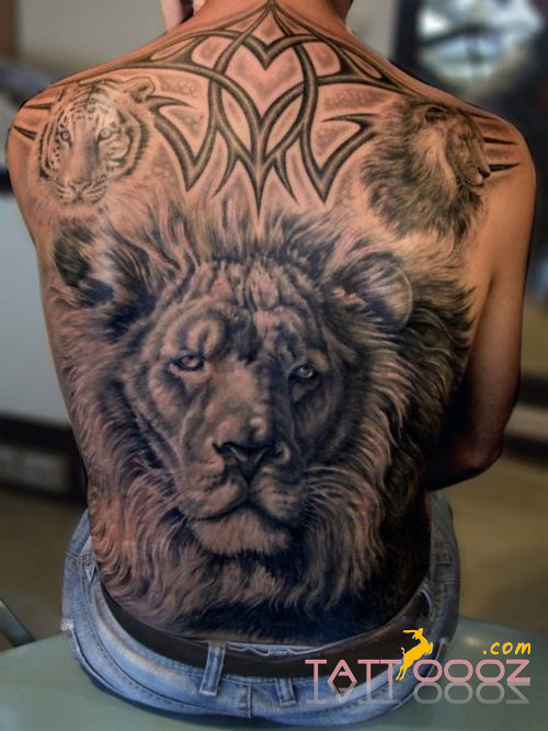Lion Tattoo Meaning Popular Lion Tattoo And Piercing Ideas
