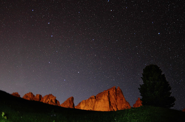 Northern stargaze