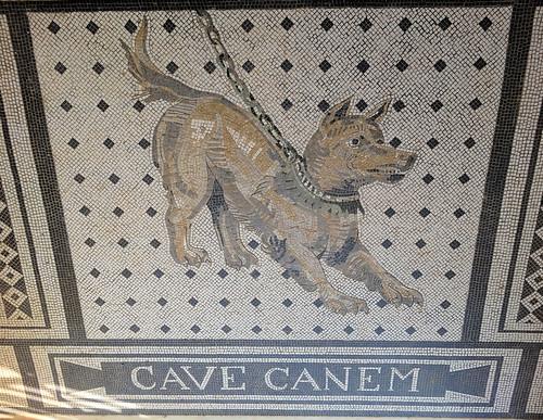 Cave Canem | by Gertrud K.