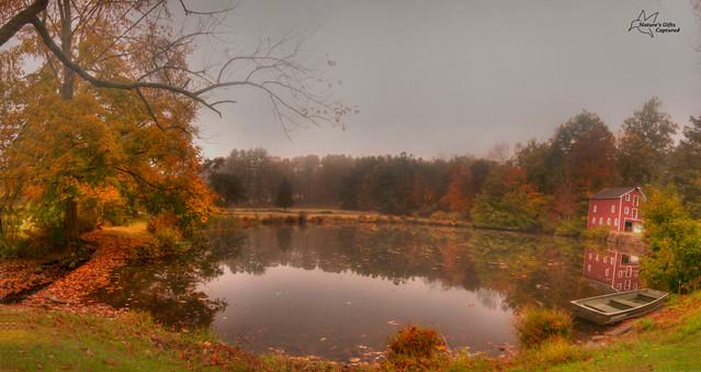 Dixon's Foggy Pond