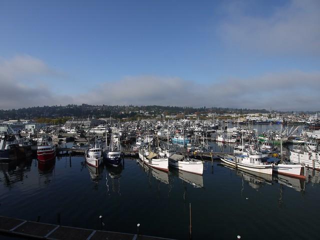 月, 2013-10-14 10:23 - Saimon Bay, Ballard