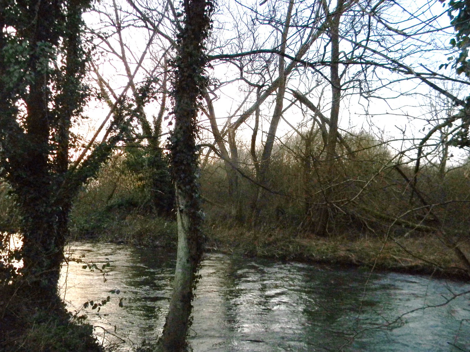 The Wey Guildford to Farnham