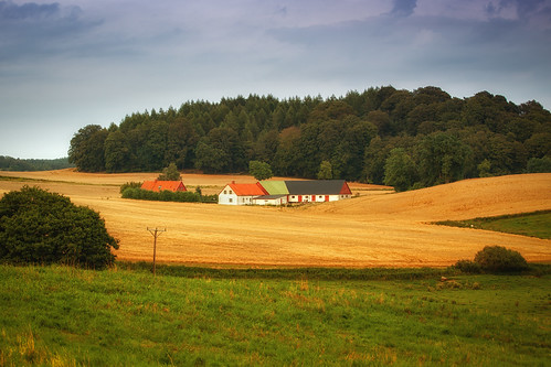 trees house building field grass outside skåne europe sweden farm hills sverige agriculture scandinavia scania zweden skane 73mm ef70200mmf4lusm canoneos5dmarkii