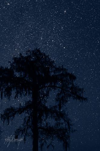 longexposure night dark stars unitedstates florida cypress nightsky newmoon greenville wacissa wacissariver thephotographyblog