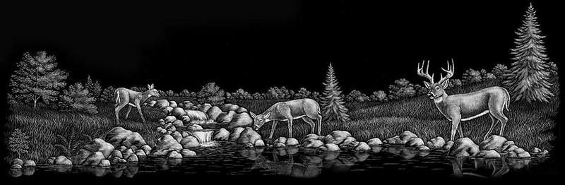 Deer River Reflection
