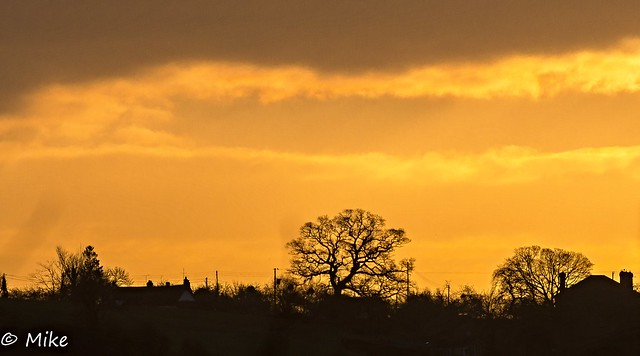 Sunrise with silhouettes 1 a Day 2015 Day 32