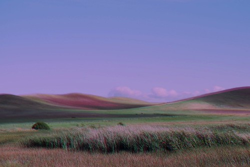 northerncalifornia solanocounty suisunmarsh werehere harrisshutter harrisshuttereffect