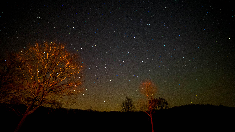 24. Go stargazing