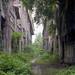 Dschungelfabrik