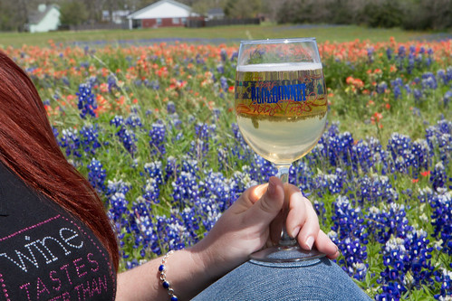 TX bluebonnet wine tour | by crossmage