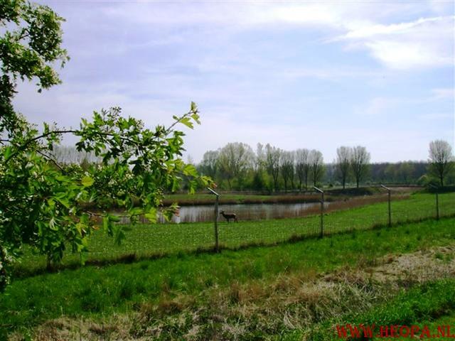 Lelystad   40 km  14-04-2007 (12)