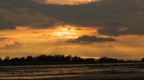 sun field clouds nikon afternoon ky louisville bowman d3200