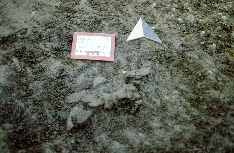 Collecchio 1992-0004