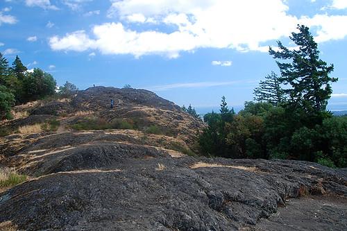 Atop Mount Finlayson, Goldstream Provincial Park, Langford, Victoria, Vancouver Island, British Columbia, Canada