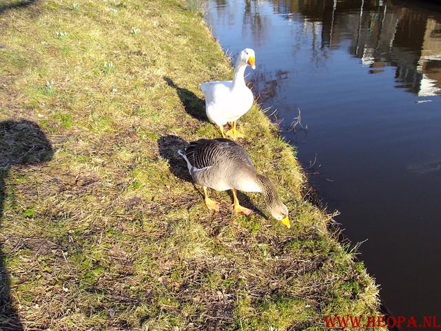 Delft 24.13 Km RS'80  06-03-2010  (13)