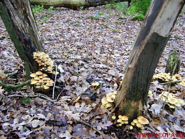 Baarn 40 Km    22-11-2008 (69)