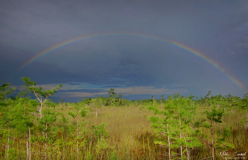 Rainbow at Pa-hay-okee | by Nick Scobel