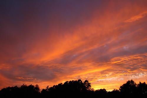 sunset nature clouds newjersey pinelands pinebarrens franklinparkerpreserve