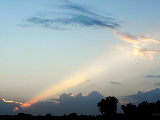 Sunrise Spotlight