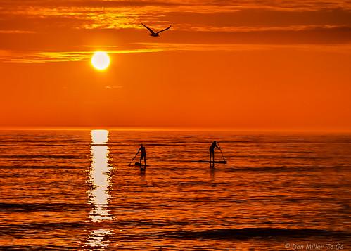 sky orange sun nature cloudy silhouettes sunsets fav20 skyscapes fav30 goldenhour blindpass skycandy gf1 fav10 views500 views100 views200 views400 views300 fav40 cloudsstormssunsetssunrises sunsetmadness sunsetsniper