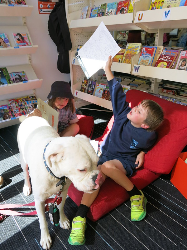 Reading to dogs